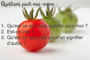 tomates_questions